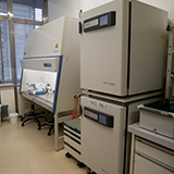 ACCESS Geneva Cell culture room